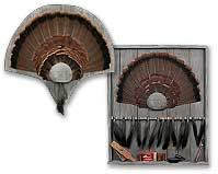 Barn Wood Turkey Tail and Beard Panels