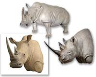 Rhinoceros Reproductions