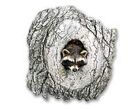 Raccoon and Knothole Mounting Kit