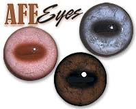 Van Dyke's AFE Glass Eyes