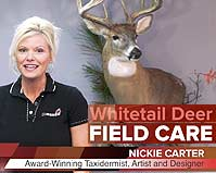 Whitetail Field Care for Taxidermy